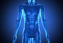 Vitenskap quiz 5 menneskekroppen